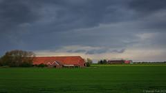 The orange farms @ Groningen
