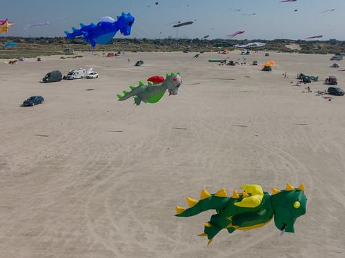 Kites above the beach