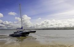 Photo of Brauntonboat