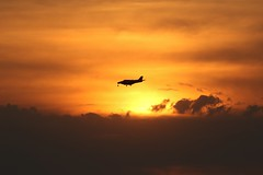 June 17, 2021 - Coming in for a sunset landing. (Bill Hutchinson)