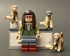 Amy Farrah Fowler's tobacco monkey study