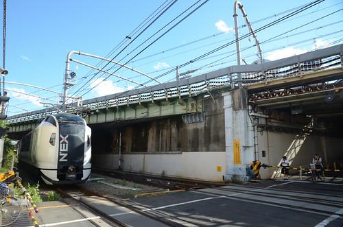 Another Narita Express E259 Series Train at Umaya-michi Crossing in 2019 June: 13
