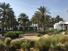 Chedi gardens