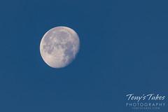 June 27, 2021 - Beautiful daytime moon. (Tony's Takes)