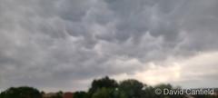 June 25, 2021 - Mammatus clouds in Broomfield. (David Canfield)