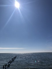 Mandø