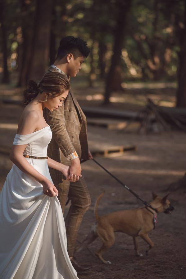 51278911070 173e3fab80 o [自助婚紗]L&S/ Hermosa 禮服