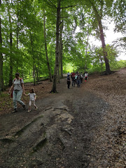 26-06-2021 BJA Friendship Committee Walk in the Forest - IMG_20210626_150858