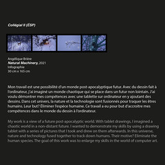 Arts visuel - Exposition virtuelle 2021