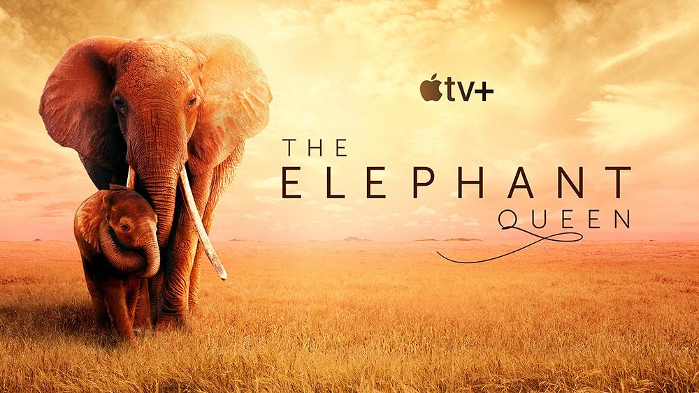 Apple_TV_The_Elephant_Queen_key_art_16_9