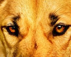 "#SBK9U • <a style=""font-size:0.8em;"" href=""http://www.flickr.com/photos/95808399@N03/51282443076/"" target=""_blank"">View on Flickr</a>"