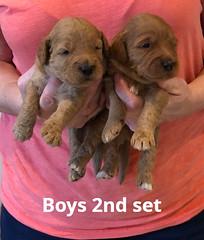 Bailey Boys 2nd set 7-2