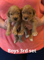 Bailey Boys 3rd set pic 3 7-2