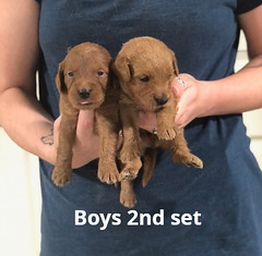 Ariel Boys 2nd set pic 2 7-2