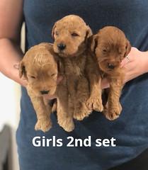 Carly Girls 2nd set pic 3 7-2