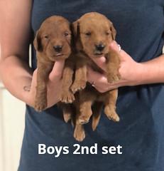 Ariel Boys 2nd set pic 4 7-2