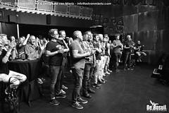 2021 Bosuil-Het publiek bij Stevie Ray Vaughan Undercover 1-ZW