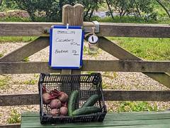Summer produce in West Dorset