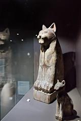 Sarcophage momiformes de chat