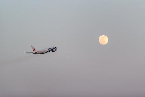 130524 Haneda Airport-44.jpg