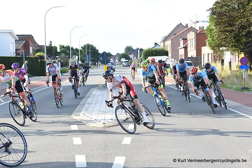 Herenthout (317)