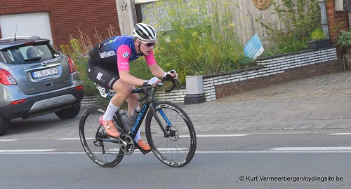 Herenthout (241)