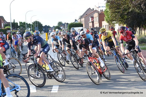 Herenthout (308)
