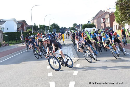 Herenthout (300)