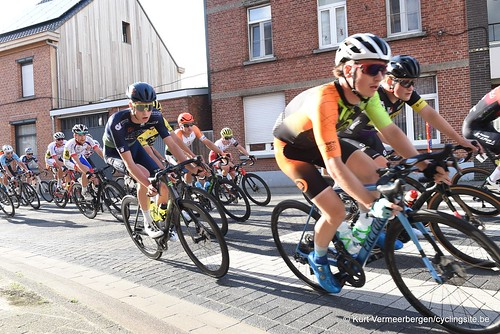 Herenthout (104)