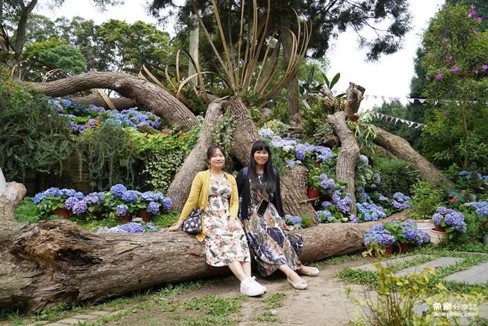 【新竹尖石】薰衣草森林|令人驚豔的景觀餐廳|賞花觀景美食通通100分 @魚樂分享誌