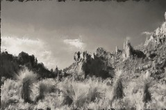 Grapevine Hills trail. Painterly grisaille. Big Bend, West Texas