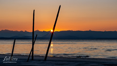 """Saratoga Beach sunrise • <a style=""""font-size:0.8em;"""" href=""""http://www.flickr.com/photos/106269596@N05/51312408101/"""" target=""""_blank"""">View on Flickr</a>"""