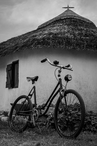 Un vélo en Camargue