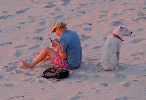 Sunset companions - Casuarina Beach, Darwin Harbour, NT, Australia