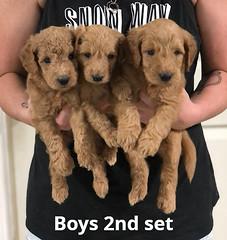 Gracie Boys 2nd set 7-16