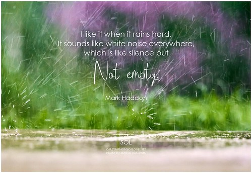 Mark Haddon I like it when it rains hard. It sounds like white noise everywhere, which is like silence but not empty