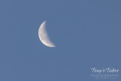 July 3, 2021 - Nice looking daytime moon. (Tony's Takes)