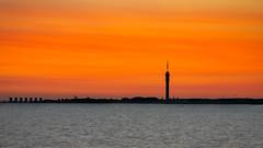 Lelystad - Morning Silhouette