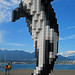 The Digital Orca - Vancouverl