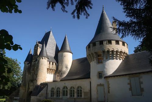 Le château de Javarzay (côté Sud) (Chef-Boutonne, 79)