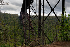 Along the Scenic Drive and Under the New River Gorge Bridge (New River Gorge National Park & Preserve)