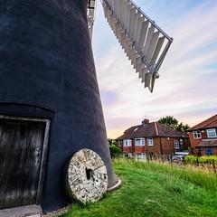 Holgate Windmill, June 2021 - 13