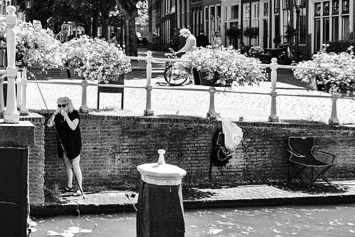 "Leiden, Netherlands, July 2021 • <a style=""font-size:0.8em;"" href=""http://www.flickr.com/photos/53054107@N06/51325010390/"" target=""_blank"">View on Flickr</a>"