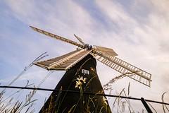 Holgate Windmill, June 2021 - 09