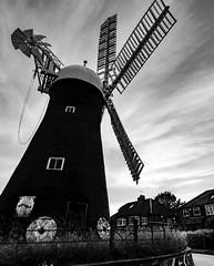 Holgate Windmill, June 2021 - 11