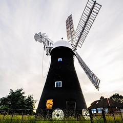 Holgate Windmill, June 2021 - 10