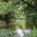 Darby Creek