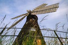 Holgate Windmill, June 2021 - 06