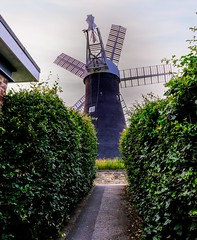 Holgate Windmill, June 2021 - 17