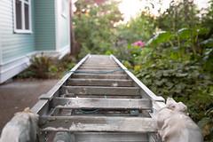 194/365 ladder stack